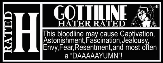 Gottiline Hater Rated